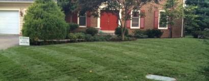 A Beautiful New Lawn